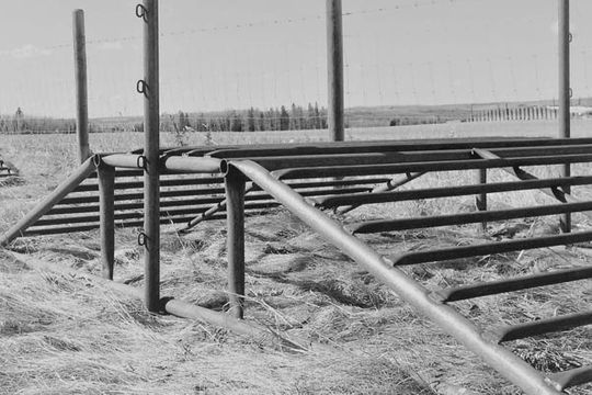 Quad/UTV cattle guards